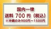 国内一律 送料700円(税込)※沖縄のみ900円〜1500円