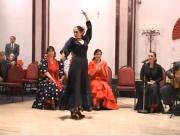 Tempestad - Flamenco - Solea