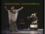 Festival Flamenco Santa Fe